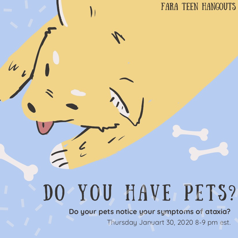 lets talk about pets